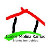 Carlos Molina Ramos & Alina Rivera Figueroa