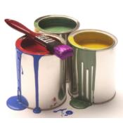 PROFESSIONAL PAINTING SOLUTION Puerto Rico