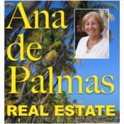 Ana de Palmas Realty