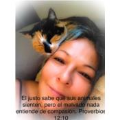 Maggie's Kittens Puerto Rico