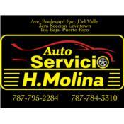 Auto Servicio H.Molina Puerto Rico