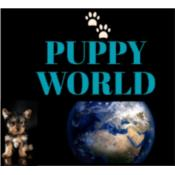 Puppy World Puerto Rico