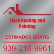 FLASH ROOFING AND PAINTING Puerto Rico