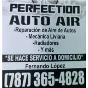 Perfection Auto Air Puerto Rico