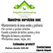 Delgado Landscaping, Category en MajorCategory cubirendo Caguas