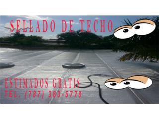 SELLADO DE TECHO, OFERTAS AREA METRO, RPM Corp, Sellado de Techo, Tel 787-383-5778 Puerto Rico
