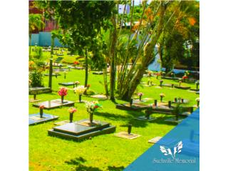 Oferta de Lotes para 2 cuerpos con 4 osarios., TECHVISION Puerto Rico