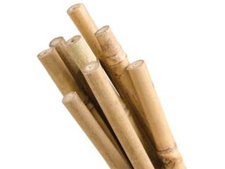 BAMBOO STAKES 4FT, Hydro Shop PR Puerto Rico