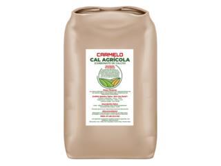 Cal Agrícola CARMELO- Carbonato de Calcio, BLOQUES CARMELO Puerto Rico