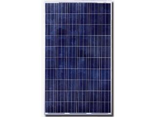 Qcell 280 Watts PV Panel POLY, MAC Autosport  Puerto Rico
