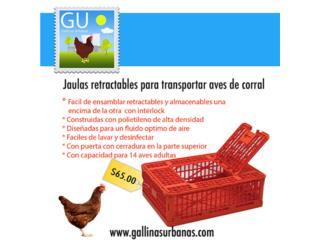 Jaulas plasticas para trasporte de Gallinas , GALLINAS URBANAS