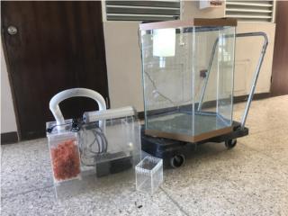 Pecera Exagonal como nueva, Mascotas Puerto Rico
