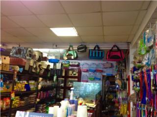 Bultos y kennels para viaje o paseo, Isabela Pet Shop