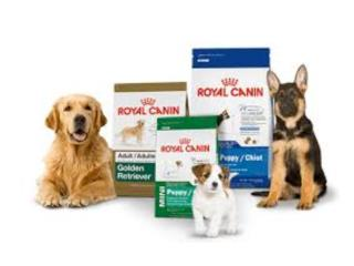 ROYAL CANIN MUCHA VARIEDAD, OUTLET PET CENTER & CENTRO AGRICOLA