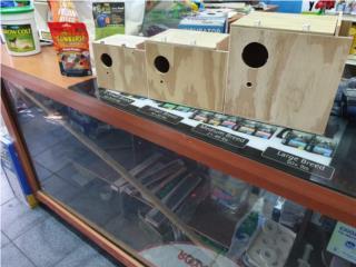 NIDOS COCATIEL, PERICOS Y LOVE BIRD CARR#1 CAGUAS, OUTLET PET CENTER & CENTRO AGRICOLA