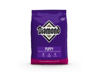 Diamond puppy 8 y 40 libras, Isabela Pet Shop