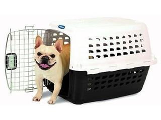 Kenell para perros, Isabela Pet Shop