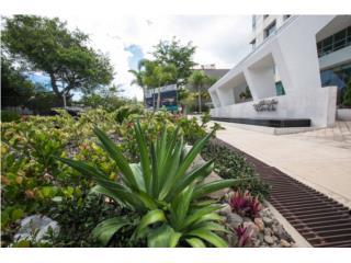 Jardiner a paisajista puerto rico infinity balance design for Jardineria paisajista
