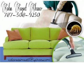 Aguadilla Puerto Rico Apartamento, limpieza de muebles