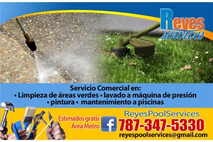 Limpieza de areas verdes comercial puerto rico reyes services