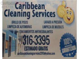PULIDO DE PISOS 787 316-3395
