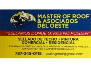 Contenedor de desperdicios sólidos de  6 yardas.  Clasificados Online  Puerto Rico