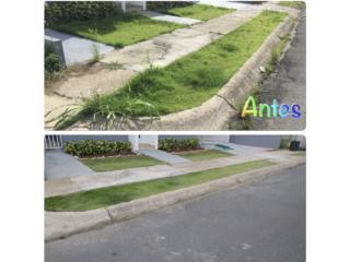 Clasificados Puerto Rico Construcción | Remodelación | 2das Plantas | 203k