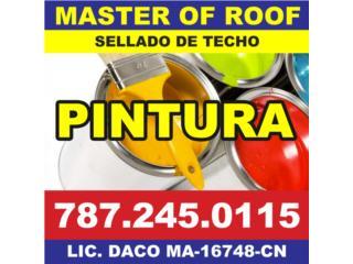 Caguas Puerto Rico Energia Renovable Solar, SELLADO DE TECHO Y PINTURA RESIDENCIAL/COMERCIAL