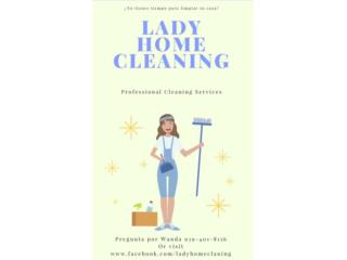 Lady Home Cleaning