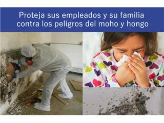Corozal Puerto Rico Equipo Industrial, LIMPIEZA CONTRA HONGOS