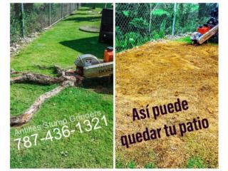 Carolina - Isla Verde Puerto Rico Apartamento, REMOCION DE TUCOS Y RAICES DE ARBOLES!