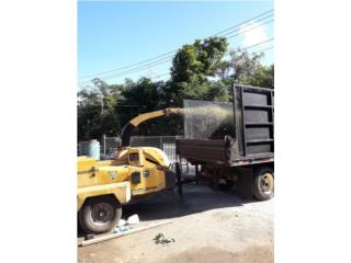 San Juan-Hato Rey Puerto Rico Equipo Comercial, Poda de arboles