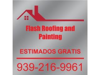 Flash Roofing and Painting