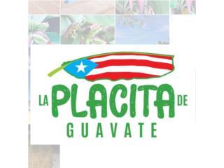 La Placita de Guavate QuedateEnCasa ClasificadosOnline Puerto Rico