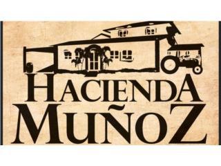 Hacienda Muñoz  QuedateEnCasa ClasificadosOnline Puerto Rico