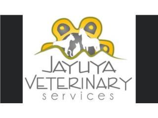 Jayuya Veterinary Services QuedateEnCasa ClasificadosOnline Puerto Rico