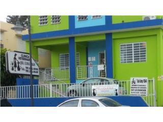 Clinica Veterinaria Eloísa PagQuedateEnCasa ClasificadosOnline Puerto Rico