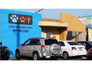 Clinica Veterinaria de Diego QuedateEnCasa ClasificadosOnline Puerto Rico