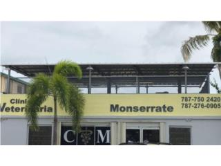 Clinica Veterinaria Monserrate QuedateEnCasa ClasificadosOnline Puerto Rico