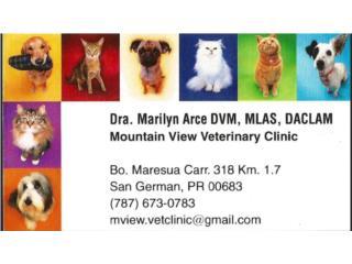 Mountain View Veterinary Clini QuedateEnCasa ClasificadosOnline Puerto Rico