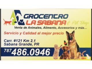 Agrocentro La Sabana  QuedateEnCasa ClasificadosOnline Puerto Rico
