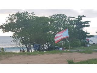 Centro de inspección Borinquen QuedateEnCasa ClasificadosOnline Puerto Rico