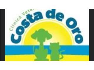 Clinica Veterinaria Costa de OQuedateEnCasa ClasificadosOnline Puerto Rico