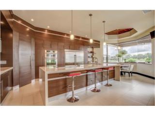 FL Real Estate  Estero